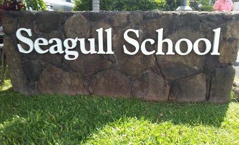 Future Educators Practice Their Skills at Seagull Pre-Schools
